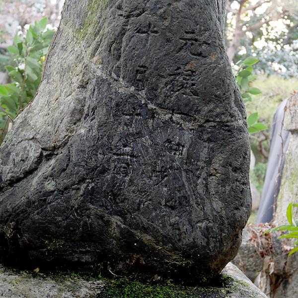 芭蕉の墓の後ろ